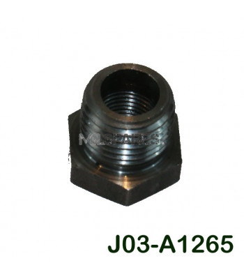 Fuel filter pipe reducer