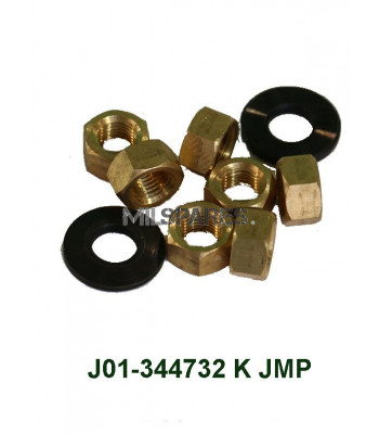 Manifold nut and washer kit